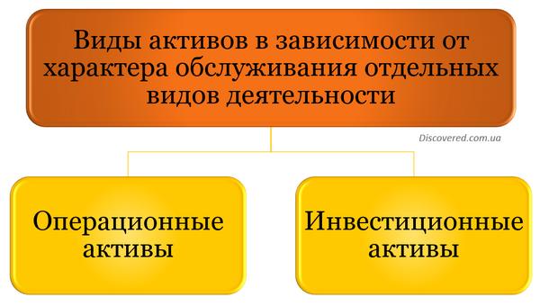 Виды активов в зависимости от характера обслуживания отдельных видов деятельности