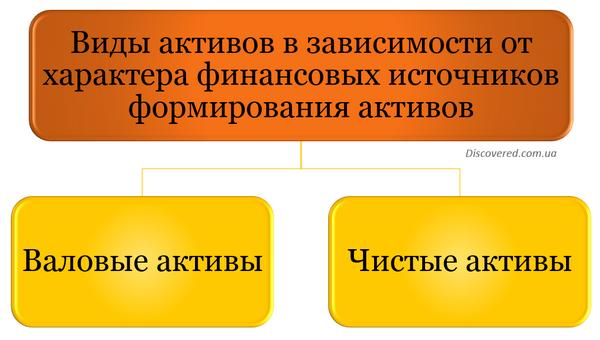 Виды активов в зависимости от характера финансовых источников формирования активов