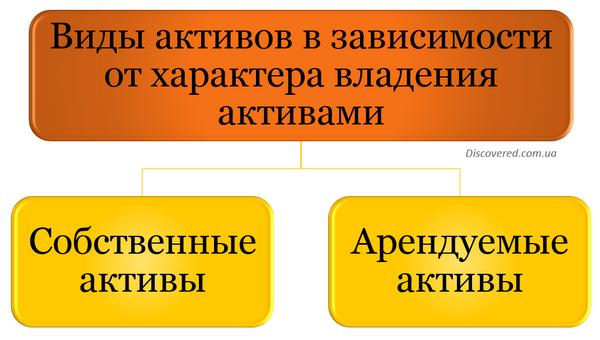 Виды активов в зависимости от характера владения активами