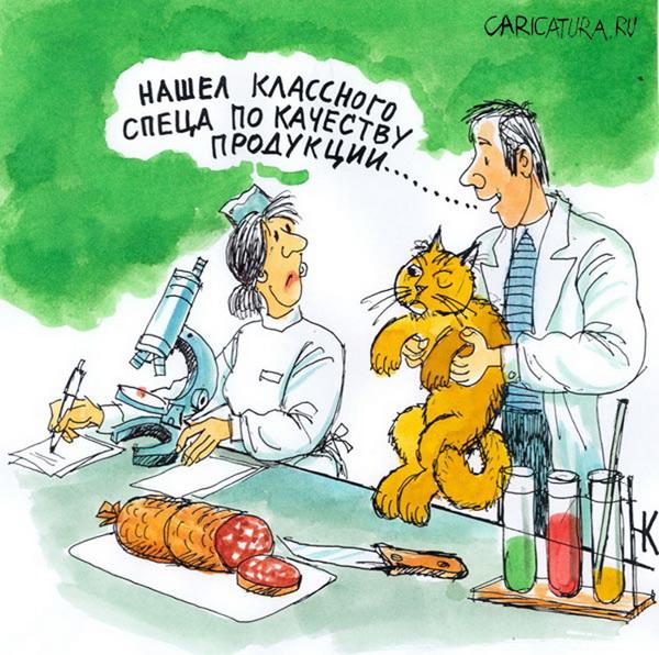 Карикатура про эксперта