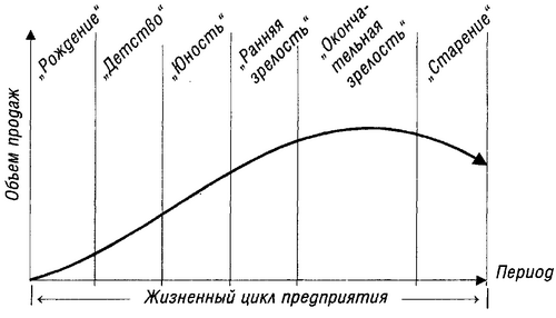 Жизненный цикл предприятия