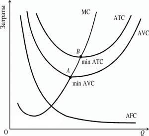 Кривые средних переменных и средних валовых издержек